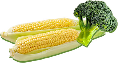 Body-friendly Safe and safe crops. 体にやさしい安心・安全な農作物。